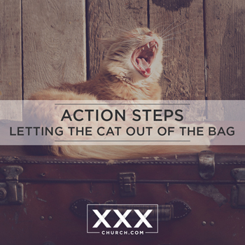 Action-steps-letting-the-cat-out-of-the-bag-blogpost