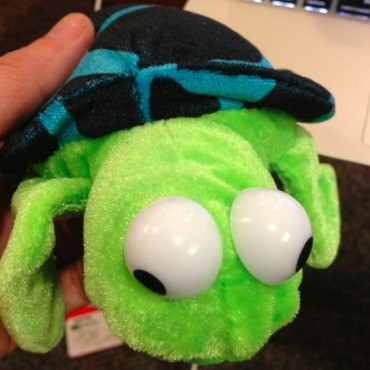 turtlepic.jpg
